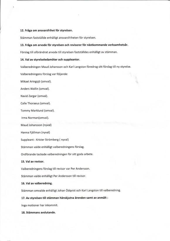 Årsmöte 2021 del 3 (2)